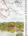수채화의 금각사, 일본 교토의 단풍, 가을 44540630