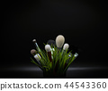 Dark background with brushes and grass 44543360