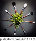 Brushes in circle 44543374