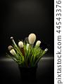 Box with fashion brushes 44543376