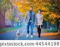 couple with dog at autumn season alley.  44544198