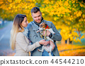 couple with dog at autumn season alley.  44544210