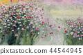 코스모스 코스모스 코스모스 가을 꽃 44544945