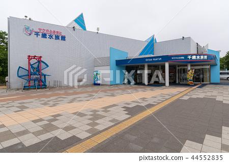 Chitose Aquarium 44552835