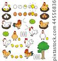닭 44556836