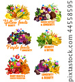 Fruits and vegetables, color diet vitamins 44558595