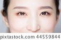 眼睛 目光 臉部 44559844