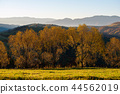 landscape, forest, mountain 44562019