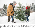 Grandfather and small girl getting a Christmas tree in forest. 44562617