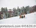 christmas, snow, senior 44562619