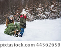 Grandfather and small girl getting a Christmas tree in forest. Copy space. 44562659