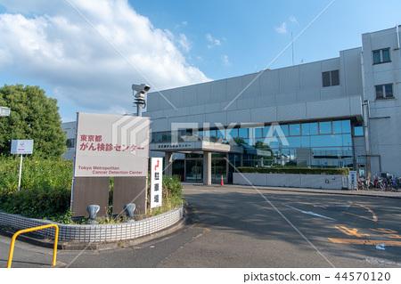 Tokyo Metropolitan Cancer Detection Center 44570120