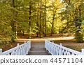 White small bridge in the park in the autumn 44571104
