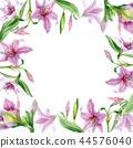 Watercolor pink amaryllis flower. Floral botanical flower. Frame border ornament square. 44576040