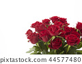 bouquet, bunch of flower, floral gift 44577480