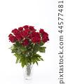 bloom, blossom, blossoms 44577481