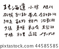 hokkaido, calligraphy writing, characters 44585585