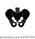 pelvis, bones, bone 44587844