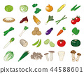Food illustration [vegetable icons collection] 1 44588601