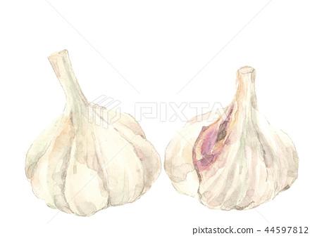 Garlic 2 pieces 44597812