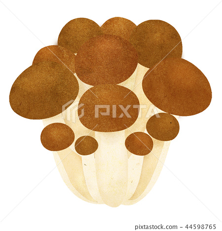 蘑菇shimeji例證 44598765