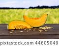 fresh melon cantaloupe variety 44605049
