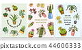 Set of cards cactus and cute template Succulents. Stickers for girls. Mexican houseplants posters 44606333