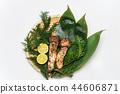 松茸蘑菇/松茸 44606871