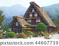갓쇼즈쿠리, 초가, 초가 지붕 44607739