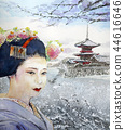 기요 미즈 데라와 마이코 교토 설경 마이코 일본 관광 kyoto 교토 명소 44616646