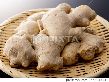 ginger 44621471