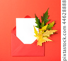 Autumn leaves in envelope. 44628888