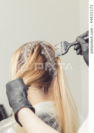 Female stylist applying a dye to the clients hair 44635172