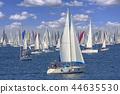 Regatta Barcolana in the Gulf of Trieste, Italy 44635530