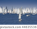 One oft Biggest sail boat regata in the world 44635536