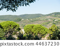 Sunlit rolling hills in Tuscany 44637230