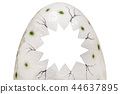 Big cracked moulage of dinosaur eggshell with place for photo or text. Isolated on white. Fun 44637895