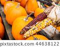 corn, vegetable, pumpkin 44638122