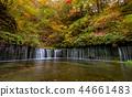 Shiraito water fall in autumn season at Karuizawa. 44661483