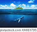 Beautiful island with palm trees. Whale underwater 44663795
