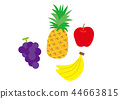 벡터, 과일, 후르츠 44663815