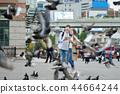 旅行,首爾站,約會,夫婦,首爾廣場 44664244