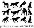 Dog Silhouettes Animal Set 44664459