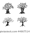 Olive trees silhouette icon set isolated on white background. Oil vector sign. Premium quality 44667514