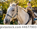 in a beautiful Autumn season of a young boy and horse 44677903