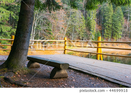 bench on the wooden pier of Synevyr lake in autumn 44699918