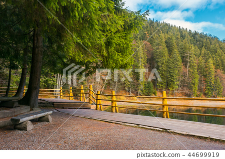 bench on the wooden pier of Synevyr lake in autumn 44699919