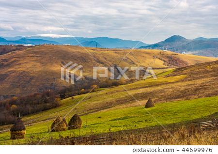 haystacks on the rural fields 44699976