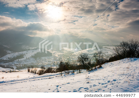 magical winter countryside 44699977