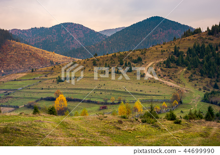 boring overcast autumn weather 44699990